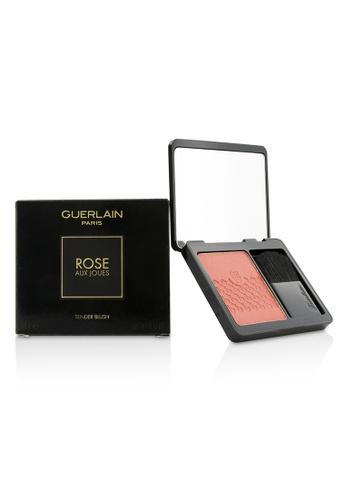 Guerlain GUERLAIN - Rose Aux Joues Tender Blush - #02 Chic Pink 6.5g/0.22oz FB827BE18255D9GS_1
