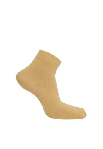 SOXGALERI beige and brown Sox Galeri Cotton Ankle Women Socks 2DD4DAAF6EE472GS_1