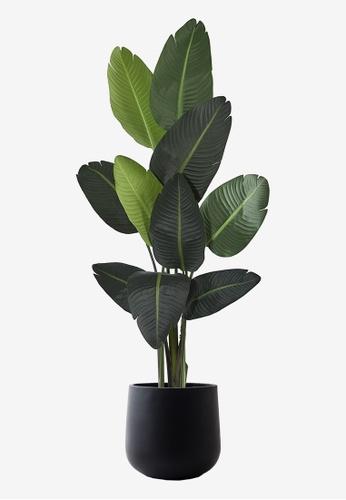 Propstation Realistic Travellers Palm Tree Potted Faux Plant 160cm in Cylinder Black Concrete Planter Pot BC59DHL0C87A06GS_1