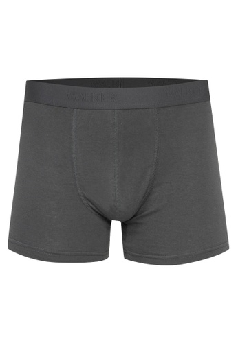 Walker Underwear brown Classic Fit Boxer Brief A994FUSBAA4F23GS_1