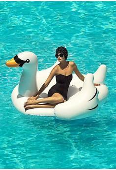 天鵝水上坐騎充氣泳圈