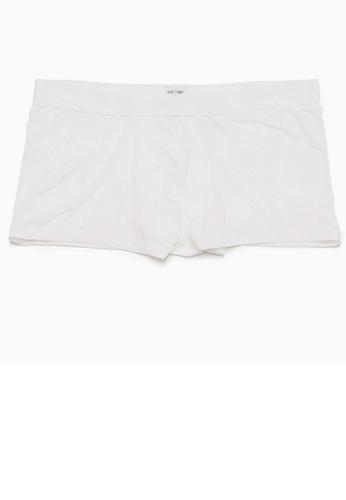 HOM white Plumes Boxer Briefs 3261FUSCD870C5GS_1